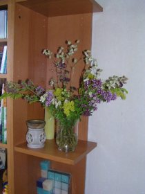 Wilde bloemen op vaas, zelf gesneden, ook de laatste keer dat ik dat gedaan heb. 2007